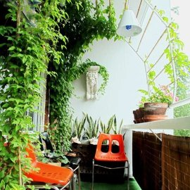 PVC arch for vines