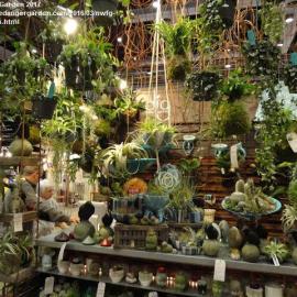 DIG Garden display